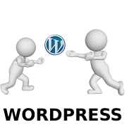 Categoria wordpress